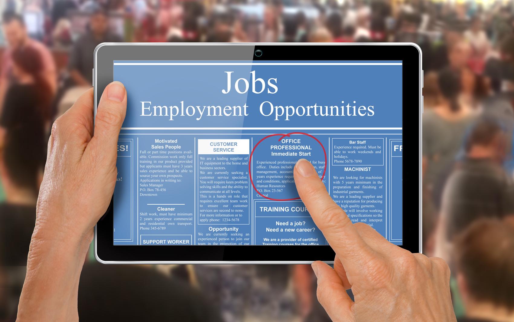 job hunt based on the education